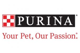 Purina Cat Food